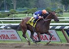 Undefeated grade III winner Off the Tracks 