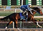 Rachel Alexandra in Fast Six-Furlong Workout