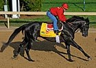 2011 Ky Derby - Predict the Order of Finish