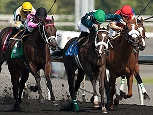 Brooklynsway (center) gets the victory in the Bison City Stakes.