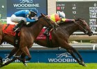 Go Blue Or Go Home wins the Highlander Stakes.