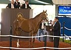 5 Best Things About 2010's Major 2YO Sales