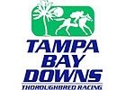 O'Connell, Ness Tie for Tampa Training Title