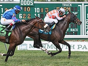 Saucy Don wins the Dan Horn Handicap.