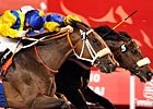 Dubai World Cup Day