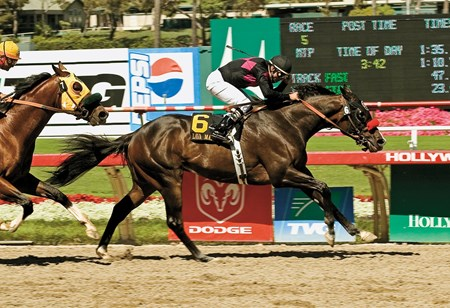 Lava Man and Patrick Valenzuela draw away from Anziyan Royalty and Corey Nakatani to win the Grade II $250,000 Californian Saturday, June 18, 2005 at Hollywood Park, Inglewood, CA. ©BENOIT PHOTO