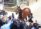 American Pharoah meets the media at Del Mar.