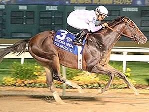 Tiz Shea D wins the 2015 Indiana Derby.