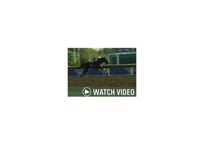 BloodHorseNOW.com writer Steve Haskin reports each morning from Monmouth Park with news from the track.