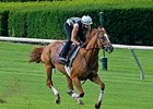 "Wise Dan breezed four furlongs in :48 1/5 at Keeneland.<br><a target=""blank"" href=""http://photos.bloodhorse.com/AtTheRaces-1/At-the-Races-2015/i-hZ5qSBB"">Order This Photo</a>"