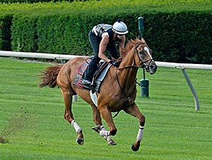 Wise Dan breezed four furlongs in :48 1/5 at Keeneland.