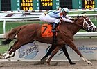 Ky. Derby Featured Profile: El Padrino