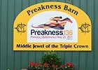 Slideshow: 2011 Preakness Stakes