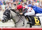 World Approval won the 1 1/8-mile American Derby on July 11 at Arlington Park.