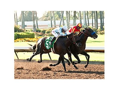 Gimme Da Lute (inside) wins last year's Los Alamitos Derby