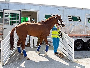 California Chrome - Arlington Park, July 7, 2015.