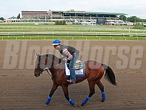 American Pharoah on the Montmouth Park track July 30.