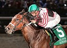 Cale's Gold, 2015 sale topper, winning the D.S. Shine Young Futurity