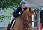 Blog: New Vocations Horse Show