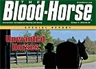 Special Report: Unwanted Horses