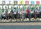 Coupled entries 1, 1A and 2, 2B leave a starting gate.