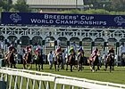 Breeders' Cup Complete Entries