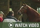 Video: Keeneland Nov - Day 4 Wrap