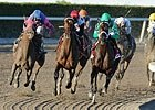 Derby Dozen - March 7, 2011