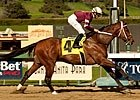 Derby Threat: Tapizar