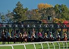 Keeneland fall racing.