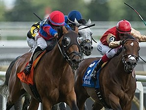 Are You Kidding Me wins the Nijinsky Stakes.