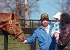 Hangin with Haskin: Secretariat 2010