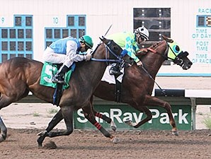 Alsono wins the Marathon Stakes.
