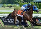 "Private Zone runs away from the field in the Forego Stakes.<br><a target=""blank"" href=""http://photos.bloodhorse.com/AtTheRaces-1/At-the-Races-2015/i-b8pFkq8"">Order This Photo</a>"