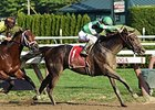 Exaggerator wins the Saratoga Special.