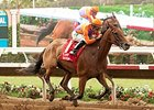 Beholder Secures her Third Eclipse Award