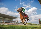 "Headline writers have enjoyed the easy puns with Illinois-bred The Pizza Man throughout his career, penning ""The Pizza Man Delivers"" and ""The Pizza Man Gets the Dough"" as he galloped to victory in minor races. But the 6-year-old English Channel gelding gave them the biggest opportunity of all to write his name when he turned back multiple grade I winner Big Blue Kitten in the $1 million Arlington Million (gr. IT) at Arlington International Racecourse, becoming the first from the Prairie State to win his home track's marquee race."