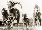 Secretariat's Cautionary Tale