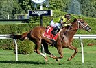 "Red Rifle rolls to victory in the Bowling Green.<br><a target=""blank"" href=""http://photos.bloodhorse.com/AtTheRaces-1/At-the-Races-2015/i-zBXW4Sf"">Order This Photo</a>"