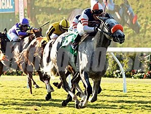 Chatis On Top wins the Solana Beach Handicap.