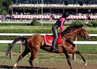 "Texas Red at Saratoga<br><a target=""blank"" href=""http://photos.bloodhorse.com/AtTheRaces-1/At-the-Races-2015/i-2Nd3G6R"">Order This Photo</a>"