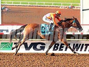 Beholder dominates the Pacific Classic by 8 1/4 lengths
