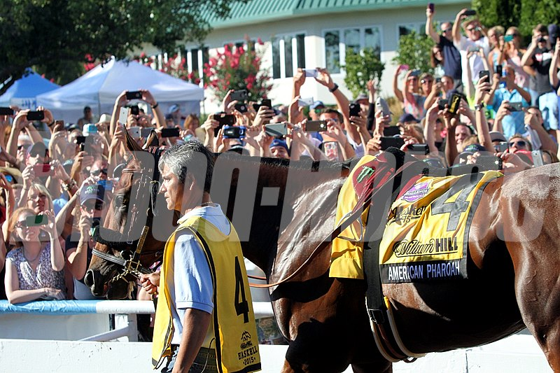 Cheering fans welcome American Pharoah to Monmouth Park.