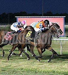 Welcome Aboard wins the 2015 Opelousas Stakes.