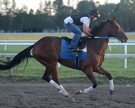 Untapable works July 31, 2015.