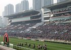 Sha Tin regularly attracts large crowds for its racing programs