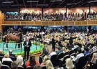 Major Gains for Fasig-Tipton Saratoga Sale
