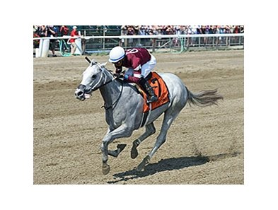 "Just Wicked heads a field of eight 2-year-old fillies for the Pocahontas.<br><a target=""blank"" href=""http://photos.bloodhorse.com/AtTheRaces-1/At-the-Races-2015/i-H7g4P3q"">Order This Photo</a>"