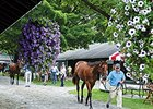 Fasig-Tipton Saratoga Sale Hopeful of Gains