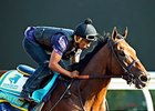 American Pharoah Among 16 Travers Nominees